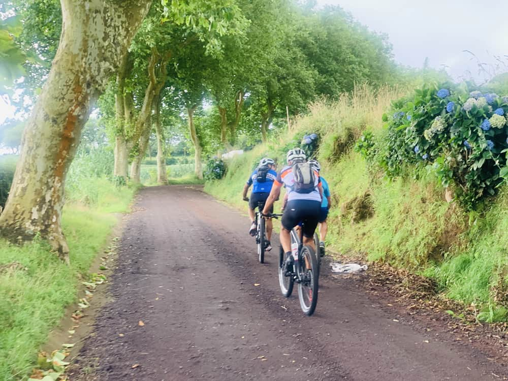 The Trails of Azores P03