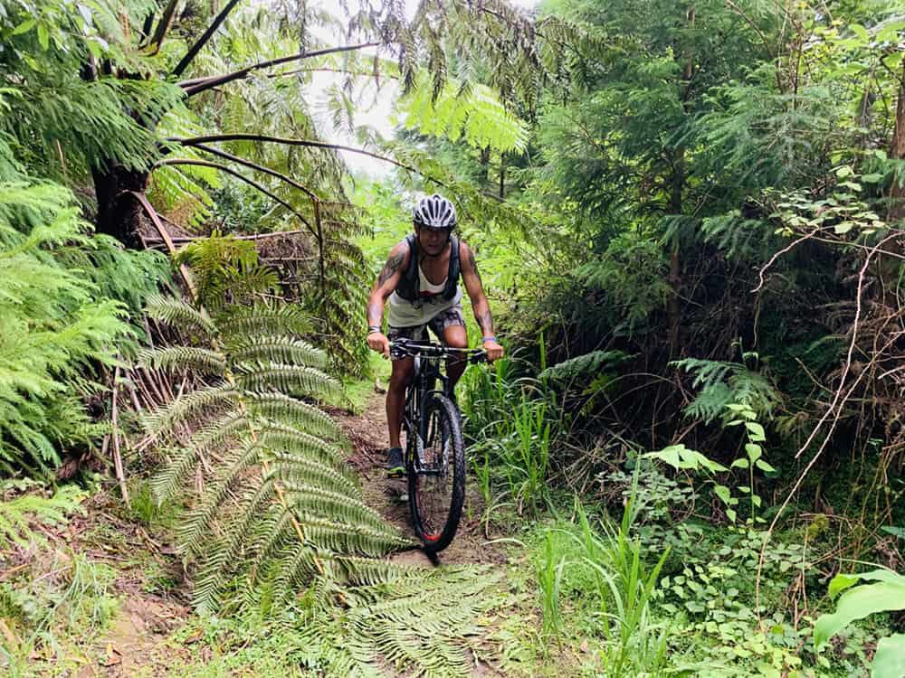 The Trails of Azores P20