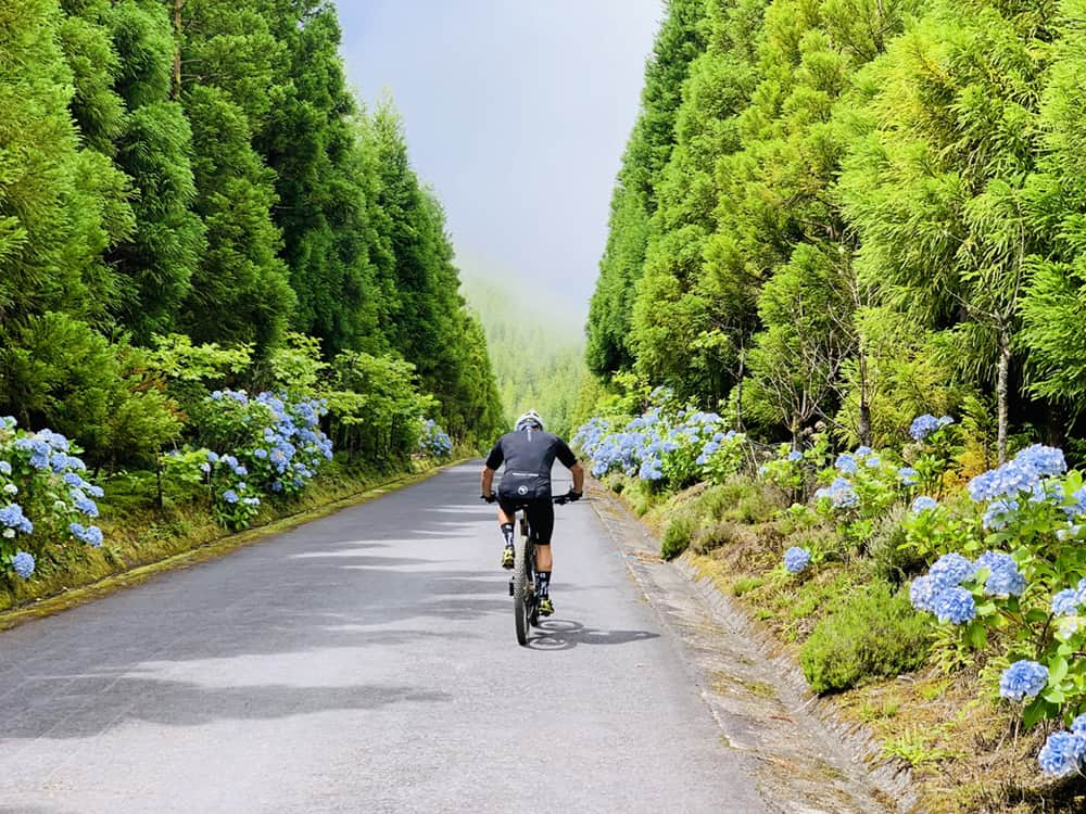 The Trails of Azores P21