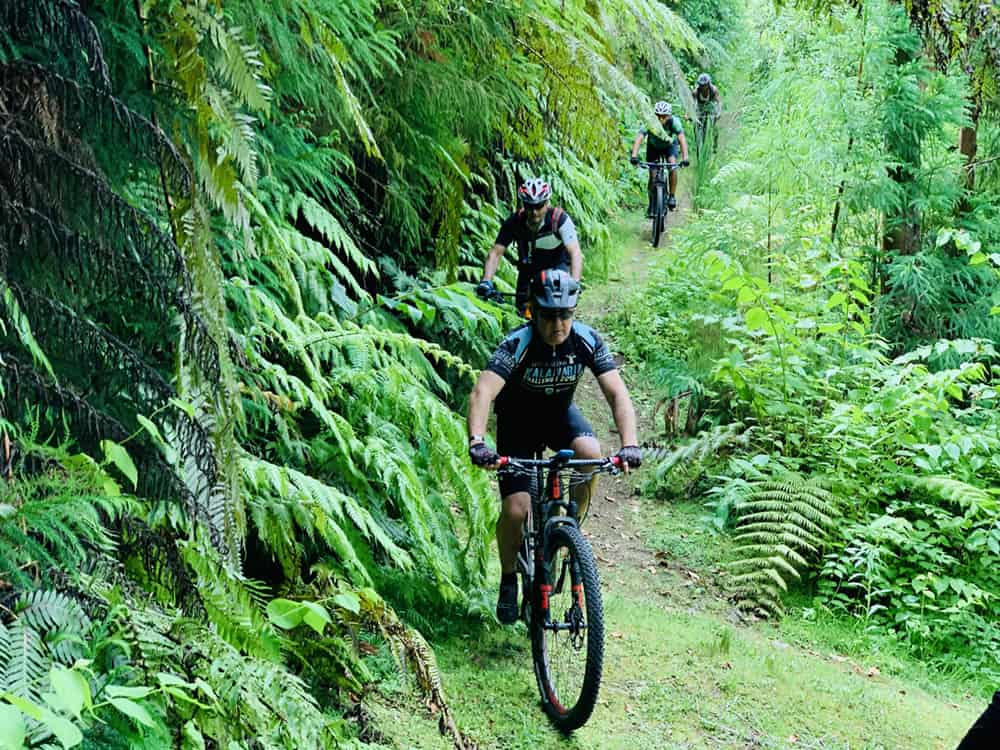 The Trails of Azores P22